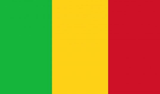20 killed in clashes in Malian village
